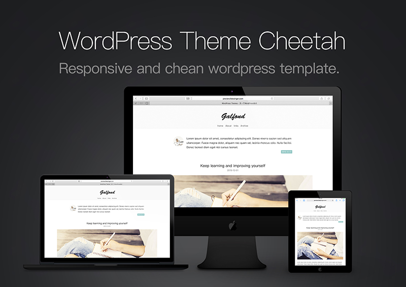 响应式WordPress摄影类博客主题Cheetah